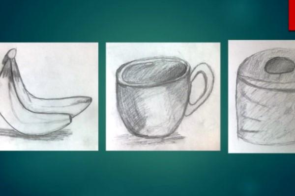 Year 7 Still Life Drawings | Braeside School